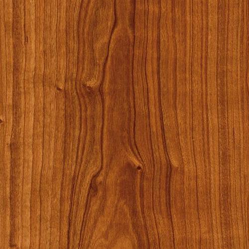 Moduleo Vision - Dryback - Planks Rio Cherry 20473