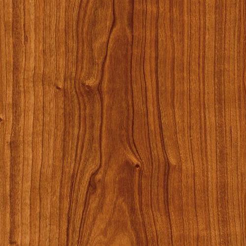 Moduleo Vision - Click - Planks Rio Cherry 20473