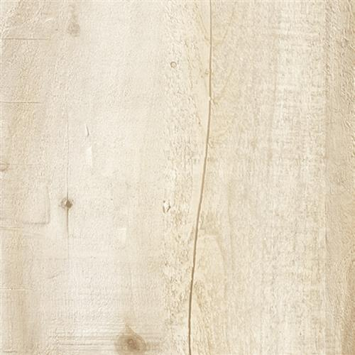 Horizon - Planks Belgian Cottonwood - 31