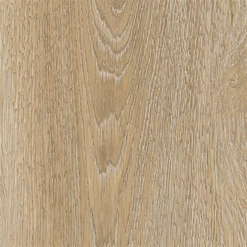 Embellish Scarlet Oak 50230