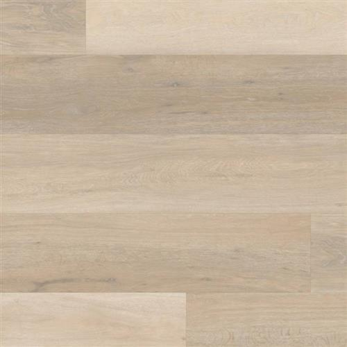 Korlok Select Texas White Ash