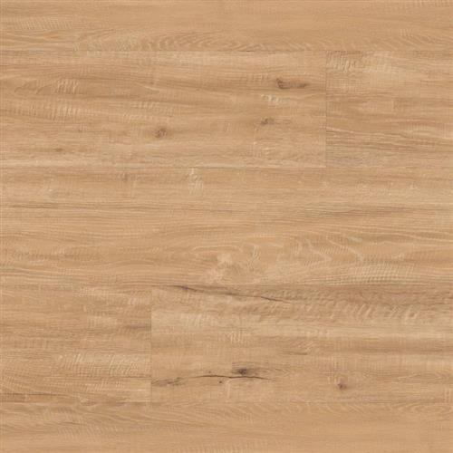 Looselay Champagne Oak