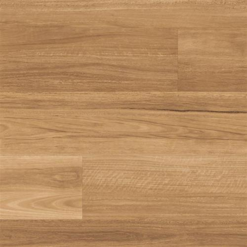 Looselay Lemon Spotted Gum
