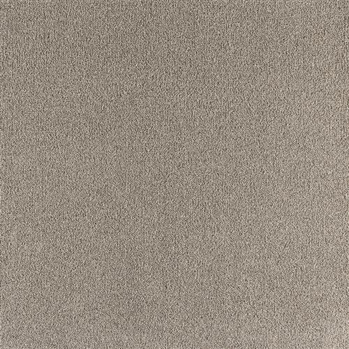 Enchanting Perfect Taupe