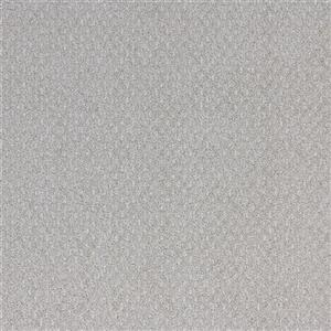 Carpet Ambience Ambience-Hilights Hilights