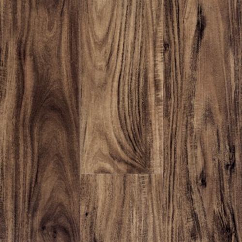Timeless Plank Sierra