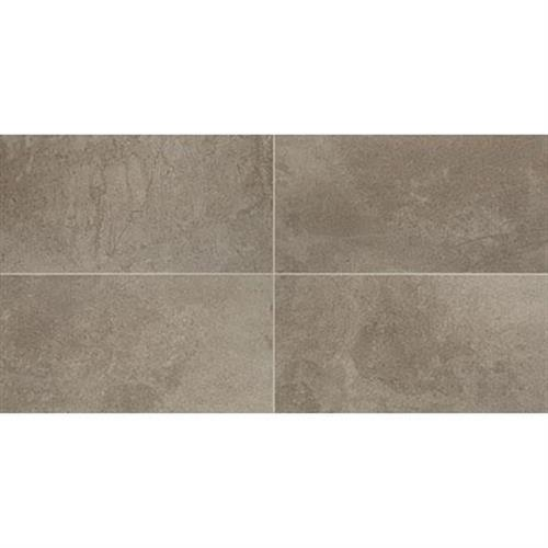 Taupe - 12x24
