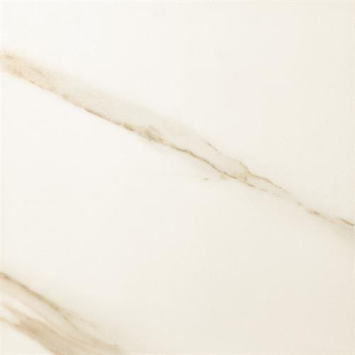 Timeless Collection Calacatta Pearl 13X13