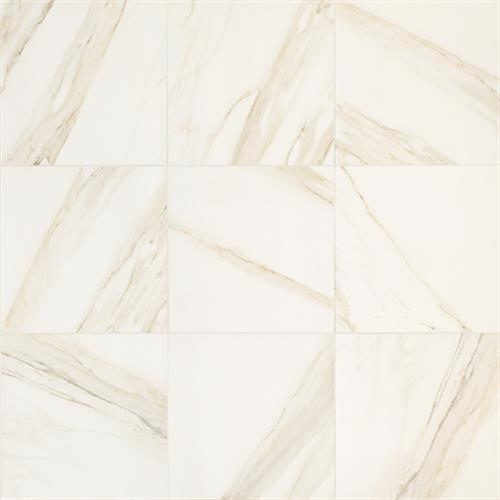 Timeless Collection Calacatta Pearl 18X36