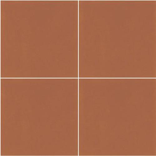 D_Segni Color Tangerine - 8X8