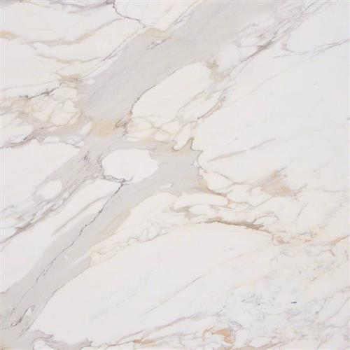 Marble Calacatta Gold - 18X18 Honed