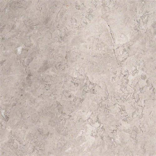Marble Tundra Gray - 6X6 Polished