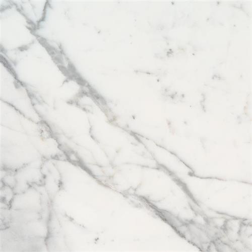 Calacatta Marble Calacatta Marble - 18X18