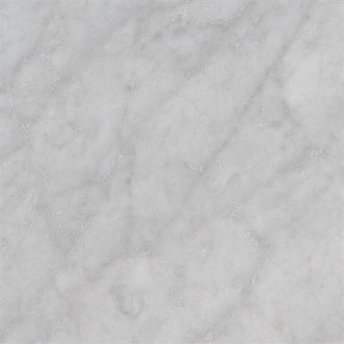 Carrara White Carrara White - 12X12