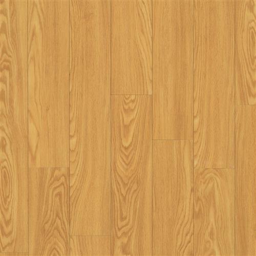 Rocky Mountain Oak