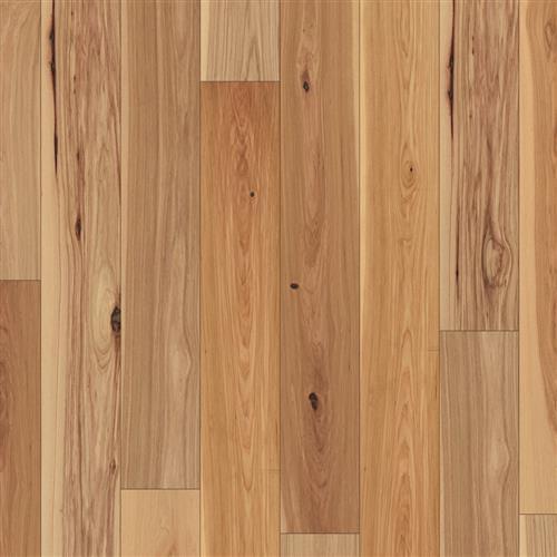 Coretec Wood Robin Hickory