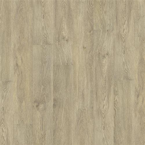 Coretec ONE Plymouth Oak