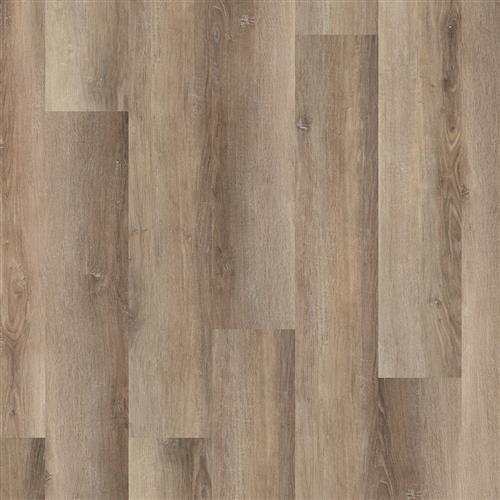 Coretec Pro Plus XL Wellington Oak