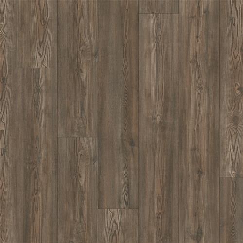 Keystone Pine