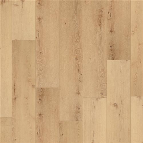 Coretec Pro Plus XL Enhanced Cairo Oak