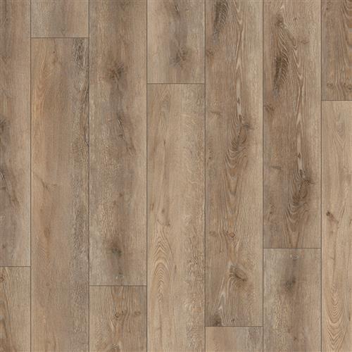 Coretec Pro Plus XL Enhanced Suva Oak