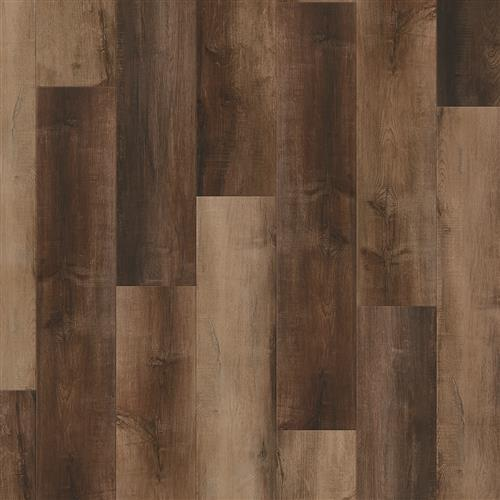 Coretec Plus Enhanced Plank Enderby Oak