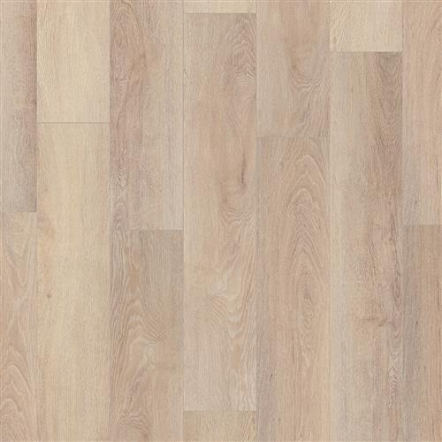 Coretec Pro Plus Enhanced HD Paladin Oak