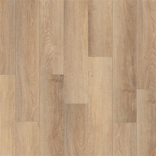 Coretec Pro Plus Enhanced HD Sentinel Oak