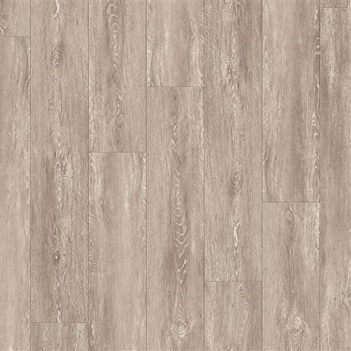 Coretec Plus XL Enhanced Rainier Oak