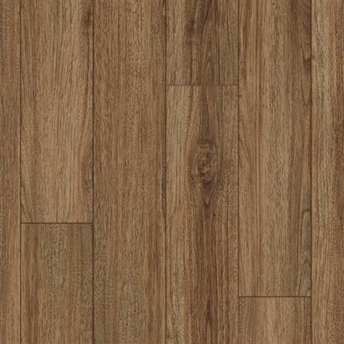 Coretec Pro Plus Enhanced Rocca Oak