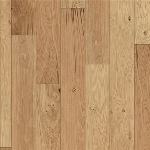 Wren Oak