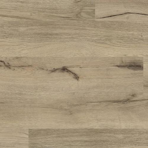 Coretec ONE Augustine Oak