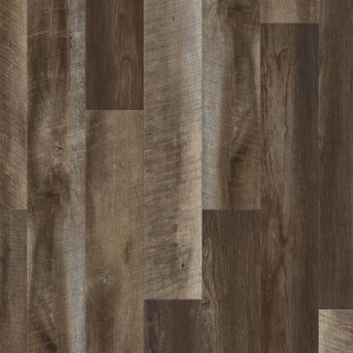 Coretec Plus Enhanced Planks Tonga Oak
