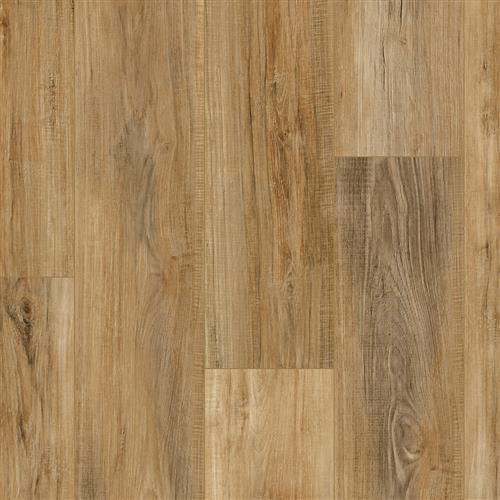 Coretec Pro Plus Enhanced Planks Edinburgh Oak