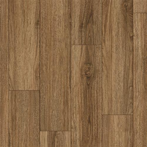 Coretec Pro Plus Enhanced Planks Rocca Oak