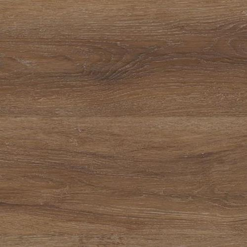 COREtec Pro Galaxy in Magellanic Oak - Vinyl by USFloors