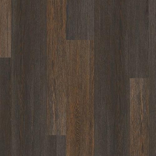 Coretec Plus Design Inspiration Oak