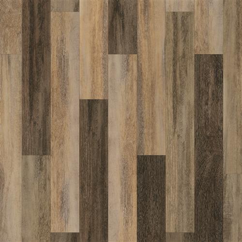 Coretec Plus Design Divergence Oak