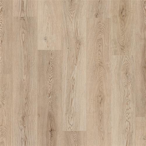 Coretec Plus HD Woodlea Oak