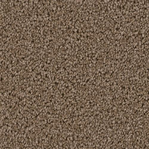 Top Star Taupe 565
