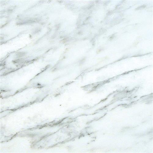 Marble Collection Arabescato Carrara