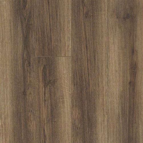 Shaw Floors Floorte Sabine Hill Plus Cocco Waterproof Flooring