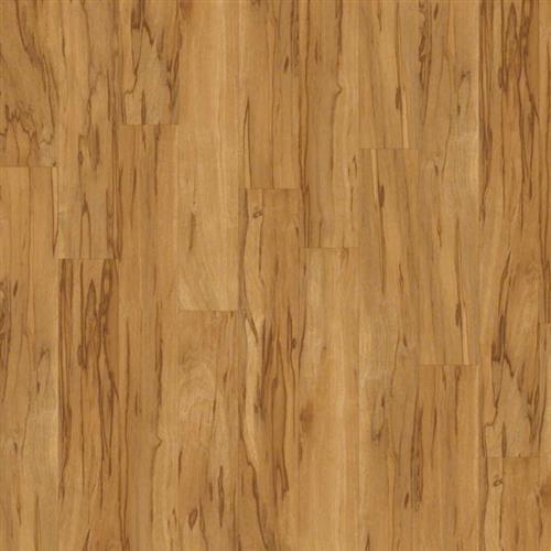 Floorte-Casa Colori