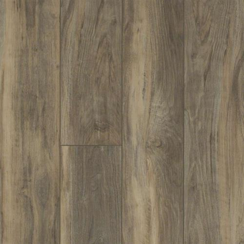 Shaw Floors Floorte Antica Hd Plus Calcare Waterproof