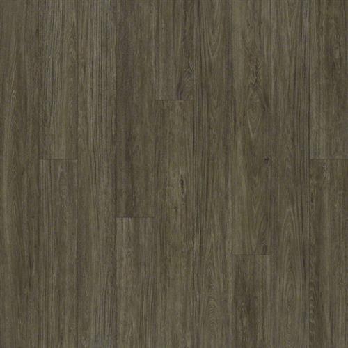 Floorte-Alto Plus Presanella