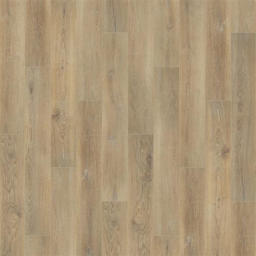 Camarilla Oak