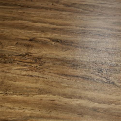 Appalachian Birch