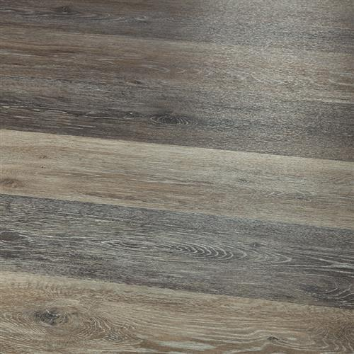 12Mil Collection Concord Oak