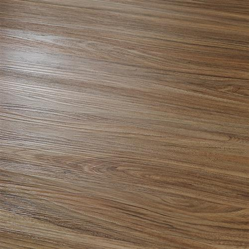 12 Mil Collection in Rubra Elm - Vinyl by Hallmark Floors