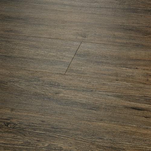 Courtier Premium Chevalier Pine